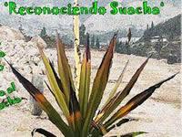 Este jueves habrá foro sobre territorio y ambiente de Soacha