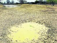 La sequía también afecta el Caribe