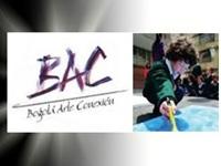 8 años de la fundación Bogotá arte conexión