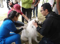 Se realizó Festival Canino y Felino en Soacha