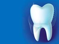 Los dientes revelan nuestros orígenes
