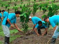 SENA premiará a los mejores en prácticas de agro