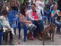 Festival canino llegó a comuna dos