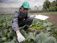 Nueve departamentos tienen los mejores jóvenes en agro