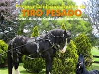 Primera exhibición equina de tiro pesado en el municipio de Tocancipá