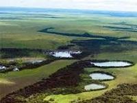 En marcha reforestación y mantenimiento de predios de interés hídrico en Cundinamarca