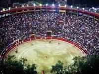 Alcaldía solicita nulidad y aclaración de tutela Sobre plaza de toros Santamaría