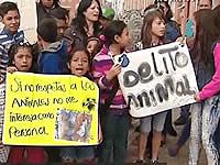 Protestas por envenenamiento de perros en Portal del Nogal