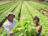 Encuentro de agroecología en Bogotá región