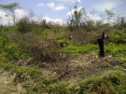 Campesinos le pidieron a Santos retirar el proyecto de terrenos baldíos
