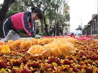 Empieza el festival cultural y turístico de las flores