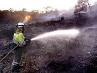 21 incendios forestales se han extinguido en Cundinamarca