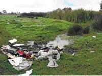 Distrito recoge más de 20 toneladas de basura del humedal Tibanica