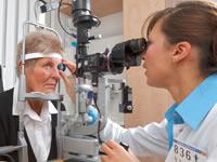Bayer le apuesta a inversiones en Investigación e Innovación