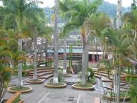 Más de 400 familias retornaron a La Palma