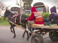 Carreteros de Bogotá arman desorden  en Soacha