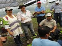 Ecuador comparte experiencias con cacaoteros cundinamarqueses