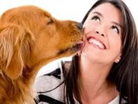 Descubren secreto del  amor entre perros y amos