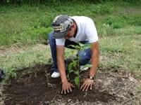 Cundinamarca busca compensar huella de carbono