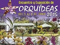 Vida y color durante la exposición nacional de orquídeas