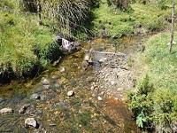 Cundinamarca consolida pagos por servicios ambientales