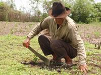 Campesinos de Soacha cosechados en el abandono