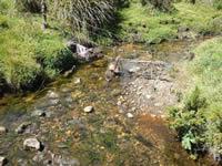 Cundinamarca compra nuevas áreas de preservación hídrica