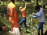 Cundinamarca fortalece sus procesos de educación ambiental