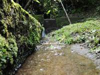 Cundinamarca adquiere más predios para conservar el recurso hídrico