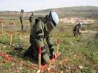 La OEA certificaría territorios libres de minas