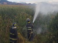 Controlado conato de incendio en humedal del Neuta