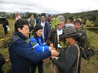 En Cundinamarca serán sembrados un millón de árboles