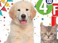 Este sábado se realizará Festival Canino y Felino en Soacha
