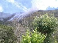 Incendio forestal en Cundinamarca
