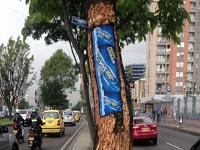 Dañan corteza de árboles en Bogotá por publicidad