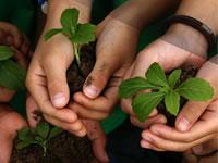 Diez mil  mujeres soachunas comprometidas con el medio ambiente