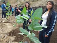 Escombrera  de Soacha fue cubierta de árboles