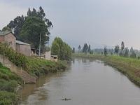 Posible contaminación por 1.500 vacas que toman agua del río Bogotá