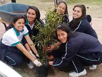 Colegio de Soacha recupera parque en la comuna dos
