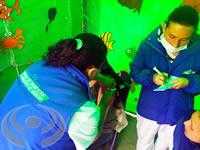 La E.S.E. de Soacha sonó al son de marimbas y currulao en la Feria temática de servicios