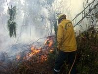 Durante septiembre se han atendido  25 incendios en Cundinamarca