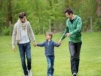 Aplazado referendo para prohibir adopción a parejas del mismo sexo