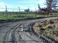 Botadero de escombros en Soacha está a poco de convertirse en pista atlética y parque recreodeportivo