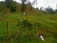 Embalse de Calandaima llevará agua a la provincia del Tequendama