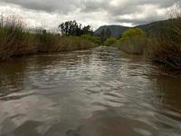 Alerta amarilla en cuenca media del río Bogotá