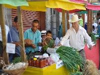 Productores cundinamarqueses llegarían sin intermediación a mercados  bogotanos