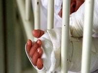 273 lesionados con pólvora en lo que va de diciembre