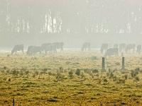 Alerta a agricultores frente a sequías y heladas