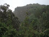 Nueva sanción en Cerros Orientales por captación ilegal