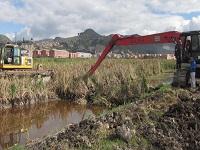 En marcha segunda fase de recuperación del Humedal Neuta